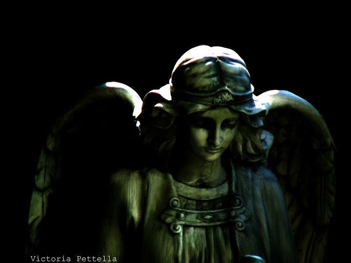 Angel in the Dark