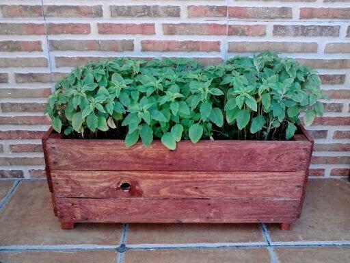 simptica jardinera para dar vida a su hogar poner plantas en su hogar har de este un lugar vivo y lleno de colores