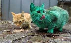 Μυστήριο με την πράσινη ραδιενεργή γάτα