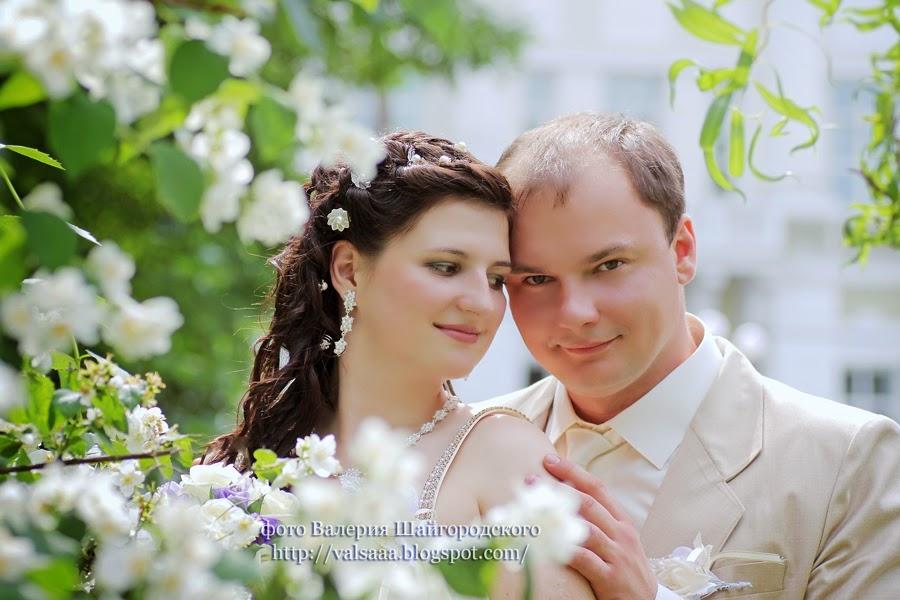 профессиональный фотограф,свадебные