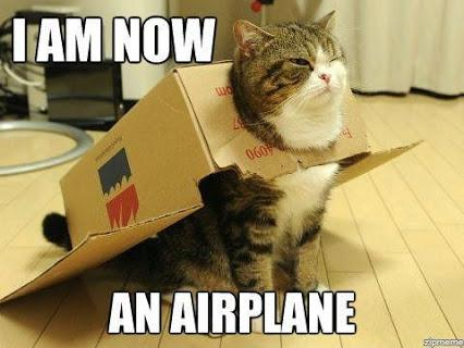 I am now an airplane #Cats #Meme #Funny #airplane
