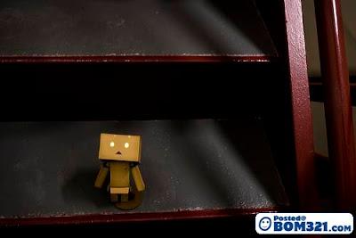 Kehidupan Si Kotak