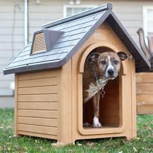 บ้านหมา