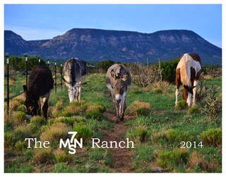 Click here for the 2014 7MSN Ranch Calendar