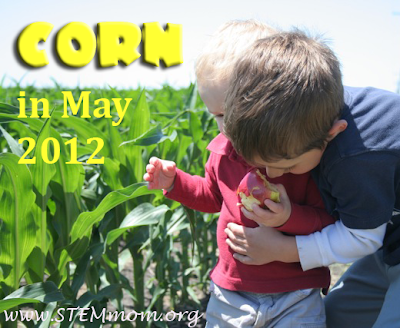 Photo of 2 boys by a corn field