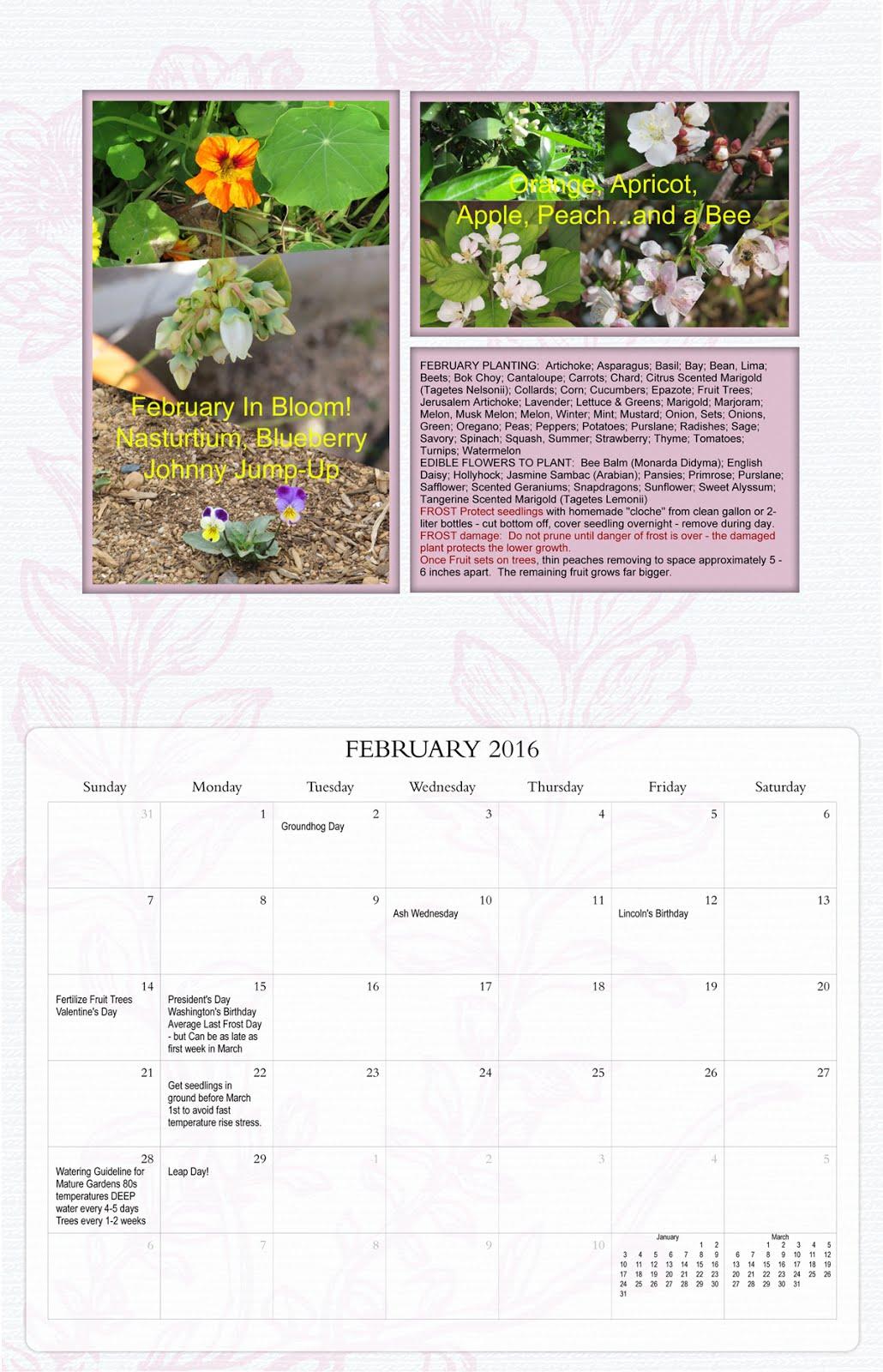 2016 Desert Gardening Wall Calendar