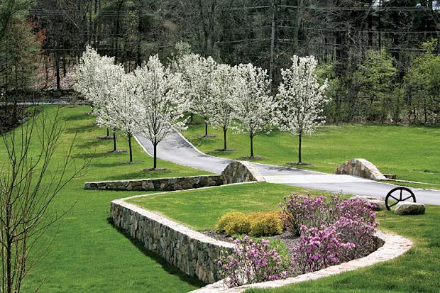 garden design hill landscape