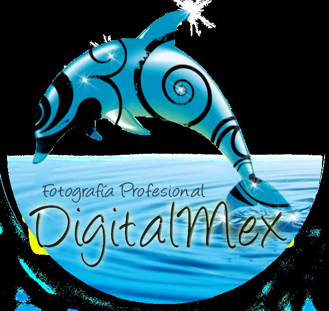 DigitalMex Estudio y Producciones