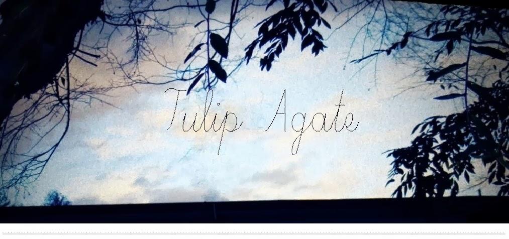 Tulip Agate