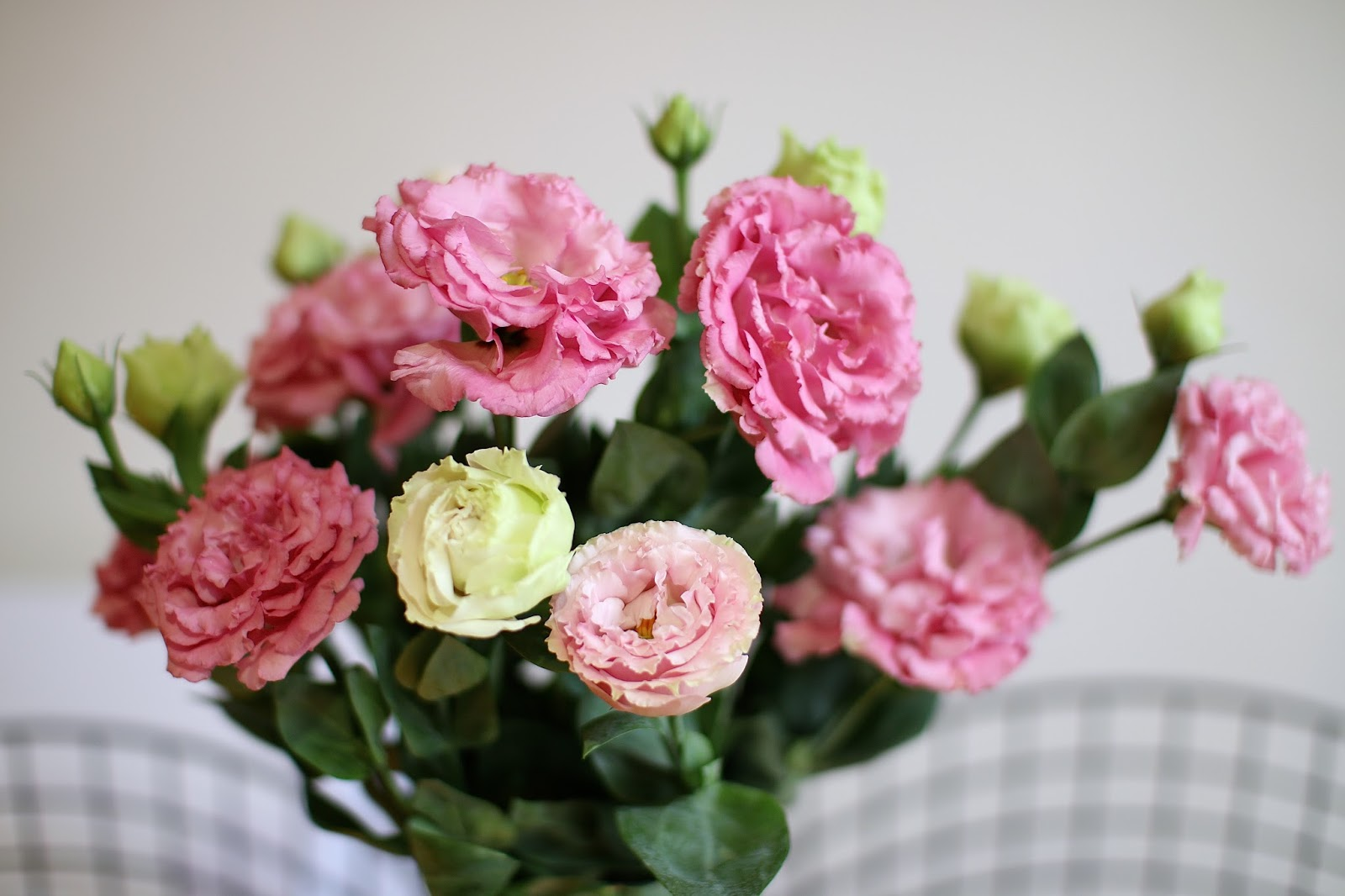 light pink and blush toned lazy roses