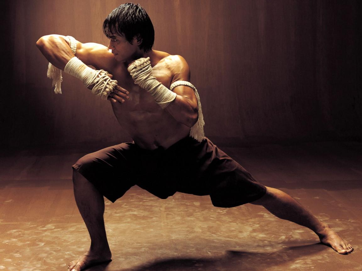 http://2.bp.blogspot.com/-DPcZZjHNdlo/TxQxVtHG6tI/AAAAAAAADME/ZVTAmPj1M6c/s1600/Movies_Movies_O_Ong-bak_010373_.jpg