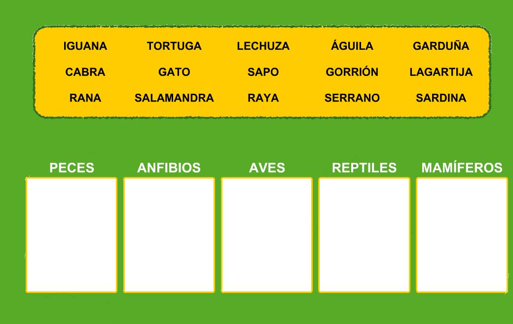 http://www.primerodecarlos.com/TERCERO_PRIMARIA/octubre/Unidad3/actividades/cono/vertebrados/visor.swf