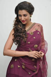 Hamsa Nandini in transparent Saree Sleeveless Choli at Bengal Tiger Movie Audio Release Function