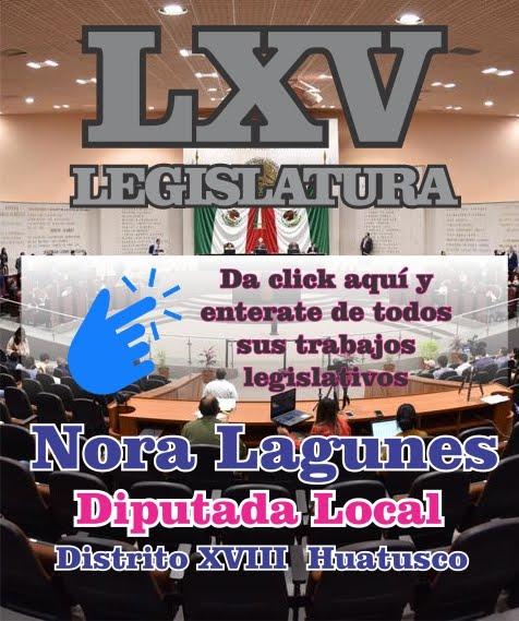 Nora Lagunes Jauregui, Diputada Local Huatusco