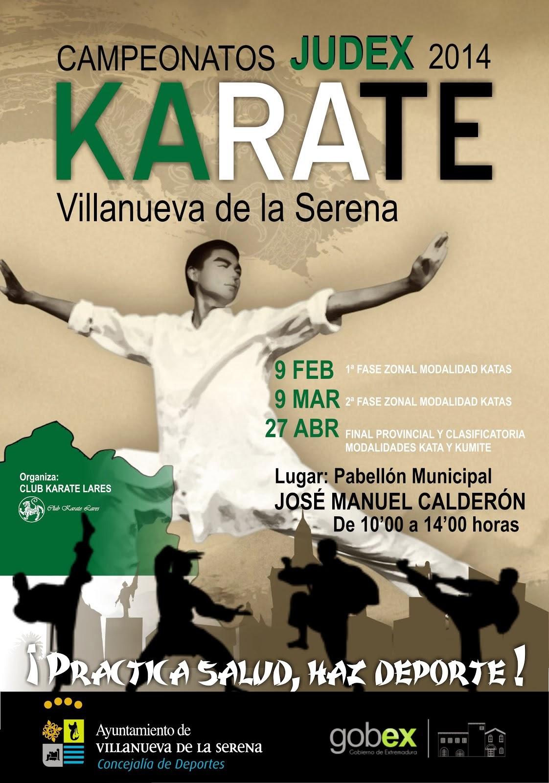 Judex Campeonato de KARATE 2014