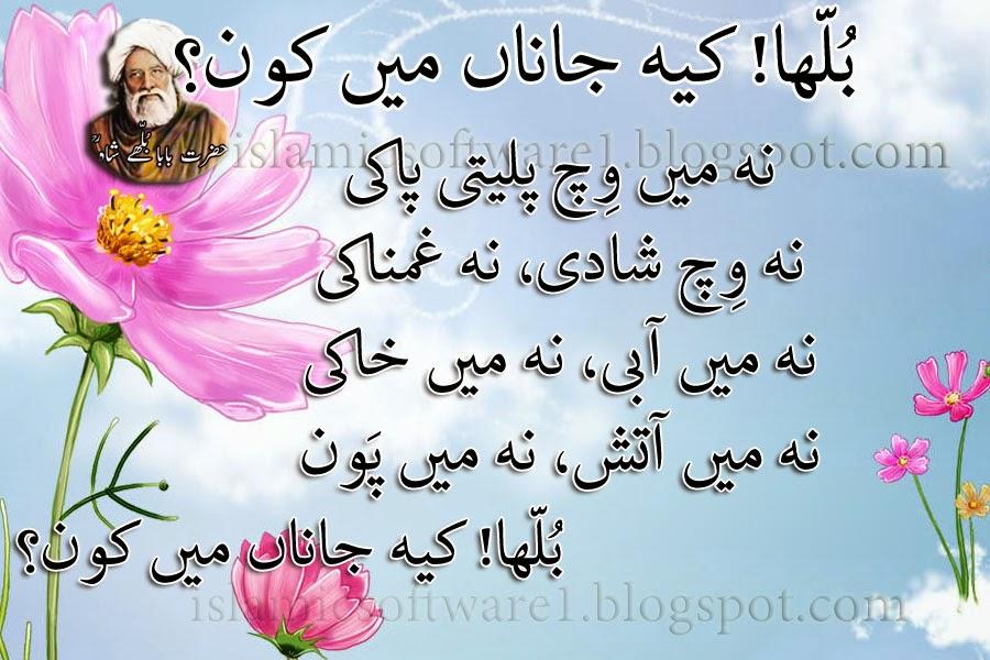 baba bulleh shah quotes 4