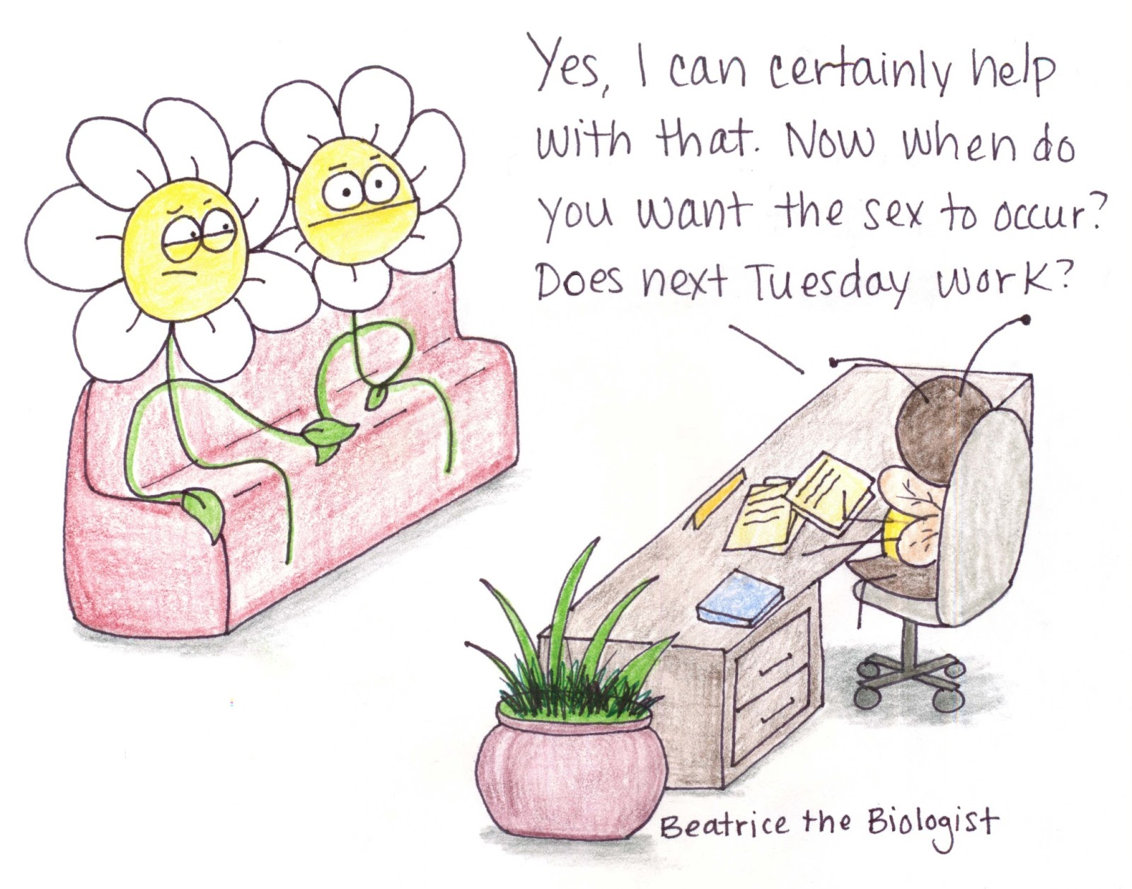 Flower Sex is Complicated - Beatrice the Biologist