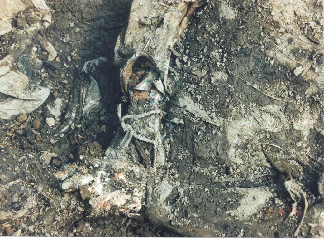 hands tied, in Nova Kasaba mass grave. Victims of the 1995 Srebrenica ...