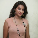 Bhanu Sri Hot Photos at Veedi Pourusham Movie Press Meet 6