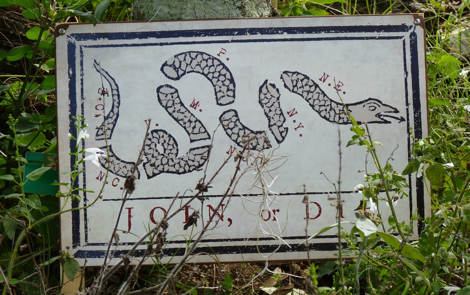 13 Colonies Flag Snake This flag was first presented