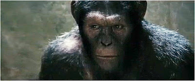 close up still photo of Caesar from planet of the Apes