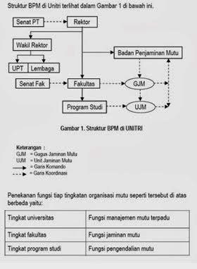Struktur BPM UNITRI