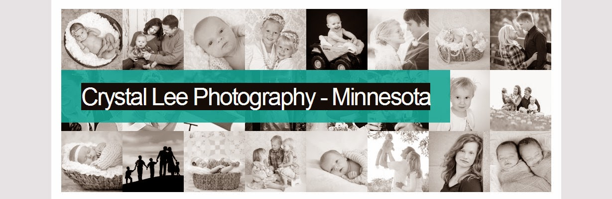 Crystal Lee Photography ~ blogging with photos
