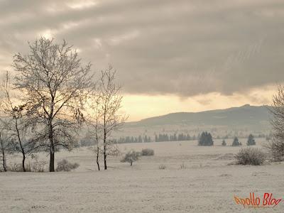 Peisaj de iarna in Satul Filpea
