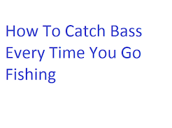 How the Pros Approach Bass Fishing