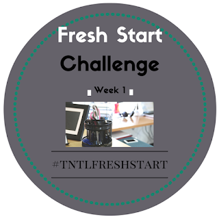 The Nifty Thrifty Lady Fresh Start Challenge, A Challenge that helps you reach finanial goals while decluttering and creating systems that work