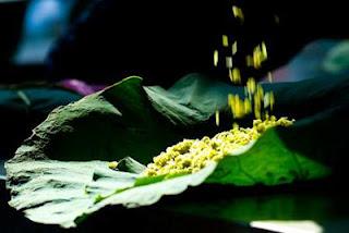 Món ngon của người Hà Nội: Cốm Vòng