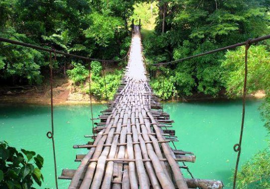 The wooden bridge which is dangerous.