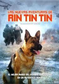 Ver Las nuevas aventuras de Rin-Tin-Tin Online