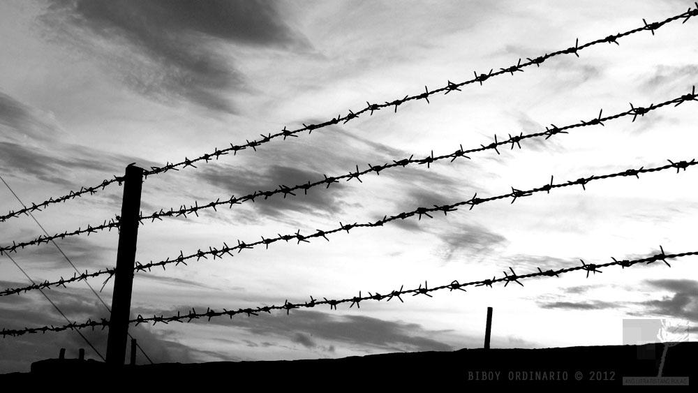 barb wire conceptual
