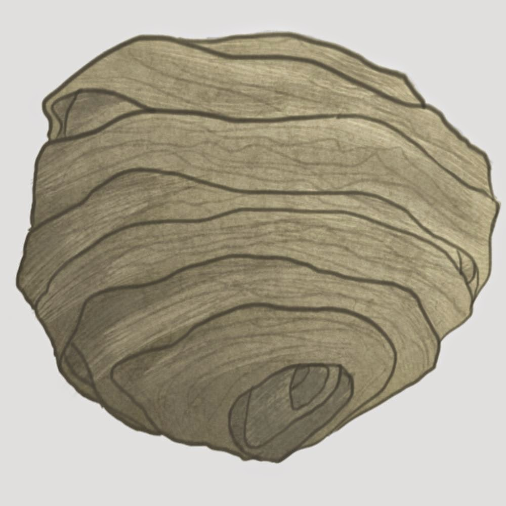 Hoggs Blog Daily Sketch Wasp Nest
