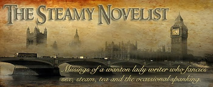 The Steamy Novelist