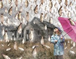 MISTERI Hujan Ikan