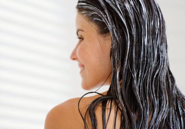 Khasiat dan Manfaat Lidah Buaya Untuk Rambut dan Kulit