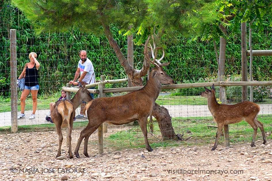 Sendaviva parque natural Navarra