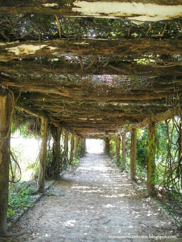 Chapel Hill Coker Arboretum - EuroAmerican Home