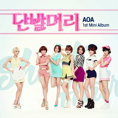 AoA Short Hair Cover