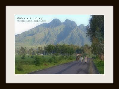 Pegunungan Virunga