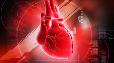 Manfaat dan Khasiat Buah Naga Merah Bagi Jantung