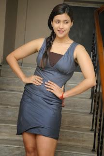 Actress Barbie Chopra Expose Thunder Thigh in Fashion Dress