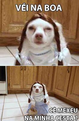 meme véi na boa mexeram na minha cesta, meme veinaboa cesta, véi na boa chapeuzinho, véi na boa cachorro vestido de menininha