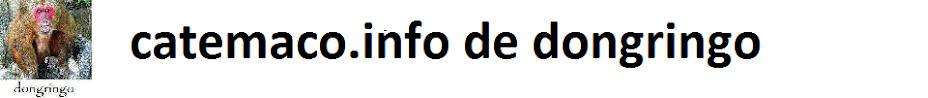 catemaco.info de dongringo