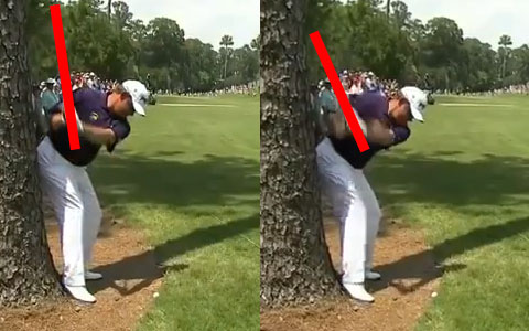 Lee Westwood hits tree at THE PLAYERS