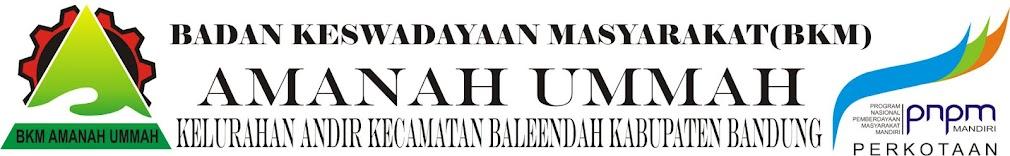BKM AMANAH UMMAH ANDIR