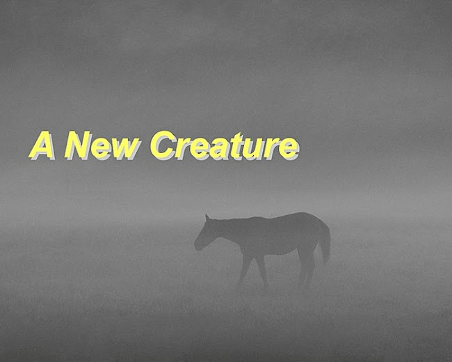 A New Creature. . . an Apostolic Pentecostal blog