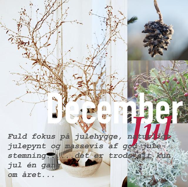 """Haveblog viser julen i """"Året der gik 2015"""""""